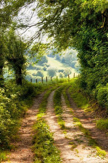 Doorkijkje op een veldweg door heuvels van Zuid-Limburg