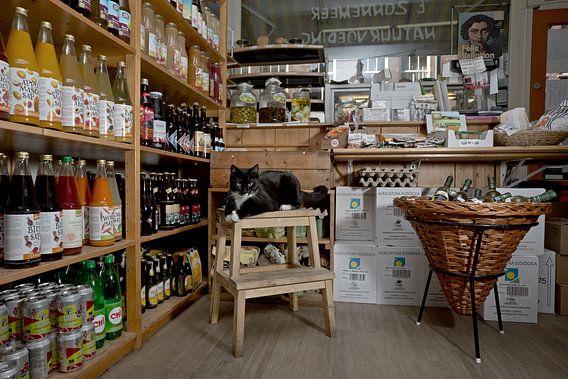Huiskat biowinkel van Robert van Willigenburg