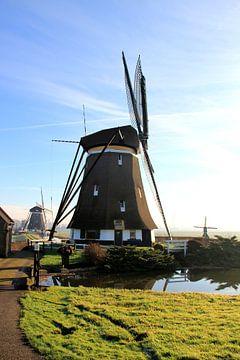 WindMolen van Robbert van der Kolk