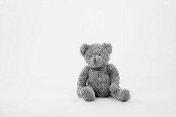 Teddybär von Tesstbeeld Fotografie