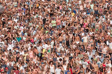 Mensenmassa op festival