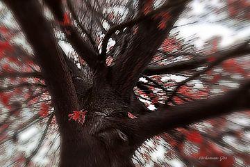 Schwenkbaum von Jos Verhoeven