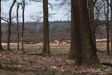 Paardrijden op de heide van Cilia Brandts