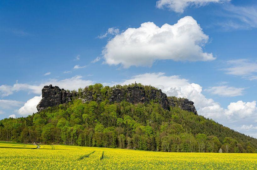 Lilienstein Sächsische Schweiz im Frühling sur Michael Valjak