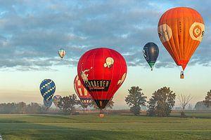 De bonte ballonnenverzameling van Fleksheks Fotografie