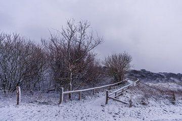 Winter op Texel - Vuurtorenweg - Vuurtoren Eierland