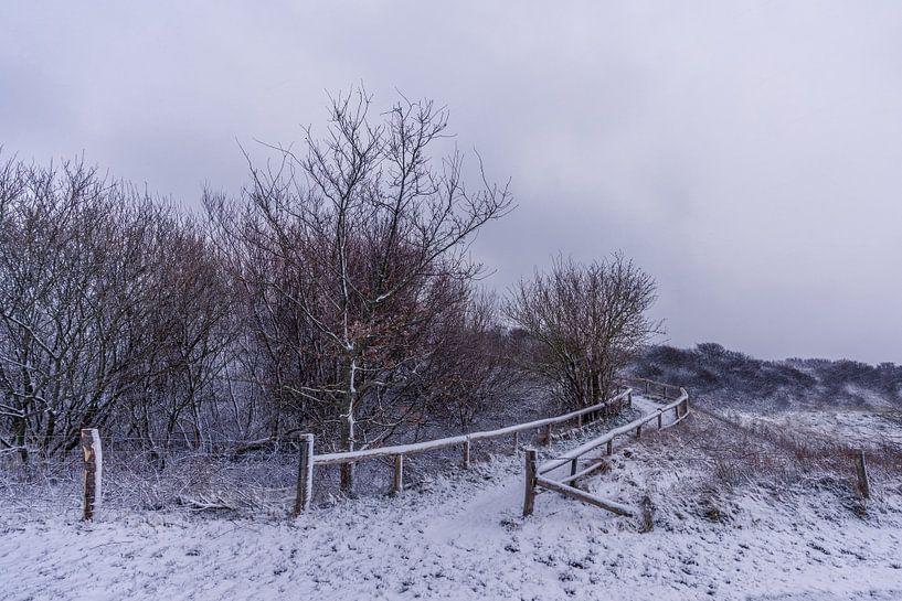 L'hiver à Texel - Phare d'Eierland sur Texel360Fotografie Richard Heerschap