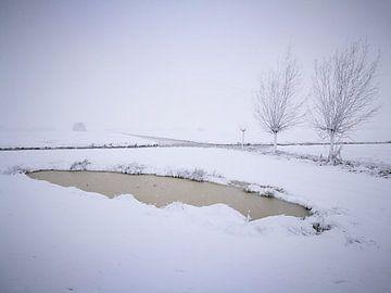 Winter in the parc 2 / Winter in het parc 2 van Malec Gebrek