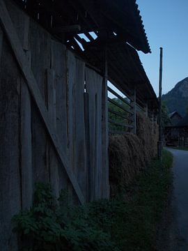 Schuur en hooirek in Sloveens boerendorp van Rinke Velds