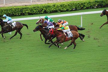 Paardenrace Hong Kong van Martin van den Berg Mandy Steehouwer
