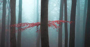 Last bit of autumn van Thomas Kuipers