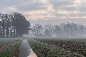 de Slingebeek van Tania Perneel