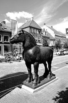 Vianen Utrecht Binnenstad Zwart Wit van Hendrik-Jan Kornelis
