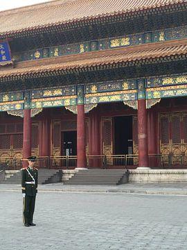 Verboden Stad met soldaat von Puck vn