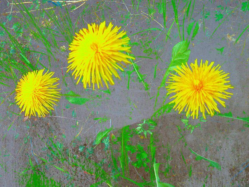 FlowerPower Fantasy 3-B van MoArt (Maurice Heuts)