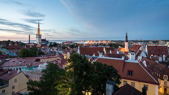 Tallinn from above van Scott McQuaide