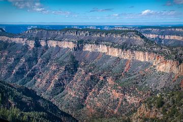Luchtfoto van de Grand Canyon, Arizona van Rietje Bulthuis