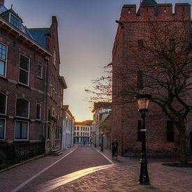Herfstlicht van Robin Pics (verliefd op Utrecht)