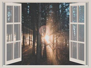 Fensterbilder Sunrise von Co Seijn