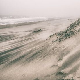 Storm op het strand van Dirk van Egmond