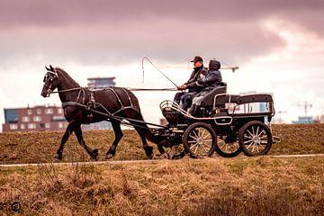 Pferd und Wagen von bob wetsteen