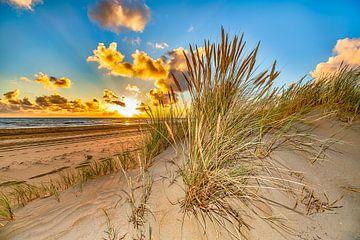Prachtige zomerse zonsondergang van 2019 - 2 van Alex Hiemstra