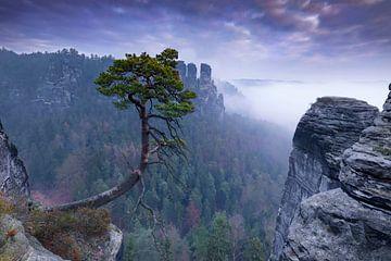 Elbsandsteingebirge von Tilo Grellmann