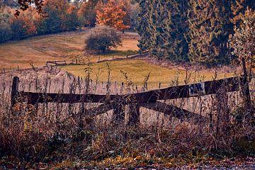 Herbststimmung von Marius Ahlers