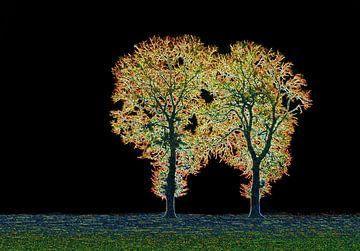 Goldene Bäume von Caroline Lichthart