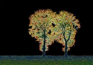 Golden Trees van Caroline Lichthart