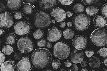 Gehacktes Holz Schwarz und Weiß von Gaby Fotografie