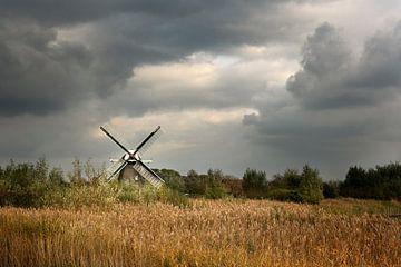 Mühle in der Provinz Groningen (2) von Bo Scheeringa