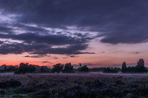Zonsondergang boven de paarse heide van