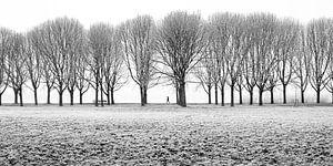 Winterse wandel