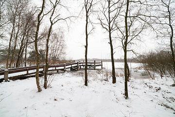 """Nationaal park """"Groote Peel"""" in de winter met sneeuw van Ger Beekes"""