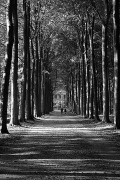 Bosweg van Frank de Ridder