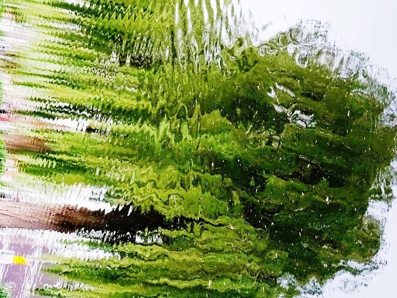 Tree Magic 124