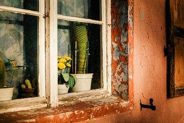 Fenster  von Sebastian Schimmel
