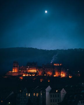 Kasteel Heidelberg, Duitsland van Marion Stoffels