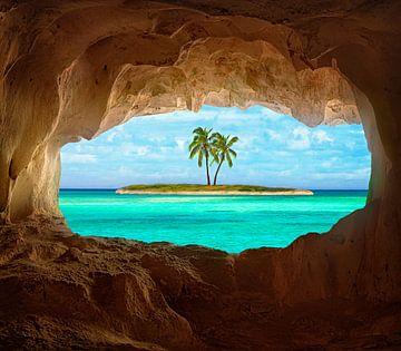 Paradise, Matt Anderson van 1x