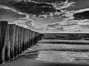 strand palen aan de zeeuwse kust in zwart wit golfbrekers van