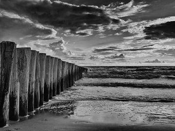 strand palen aan de zeeuwse kust in zwart wit golfbrekers van Groothuizen Foto Art