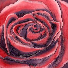 De rode roos van Natalie Bruns