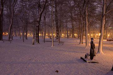 Park Servaasbolwerk / Sonnenborgh in Utrecht van Donker Utrecht
