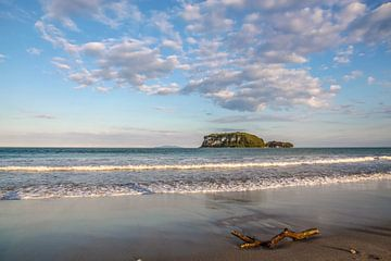 Strand bij Whangamata, Nieuw Zeeland van Christian Müringer