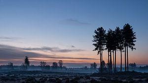 Landgoed Den Treek 2