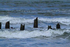 Zee van Erna Fotografie