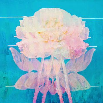 Rose Im Meer von Jacob von Sternberg