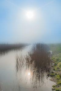 De zon gereflecteerd in een sloot vlak achter de Waddendijk nabij Koehool