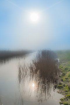 De zon gereflecteerd in een sloot vlak achter de Waddendijk nabij Koehool van Harrie Muis